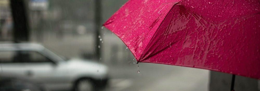 umbrella insurance Buffalo MN